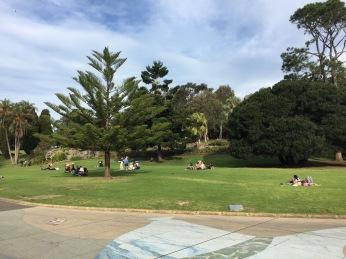 Botanischer Garten II